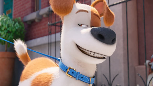 Secret Life of Pets Movie Review: Talking Dogs Are